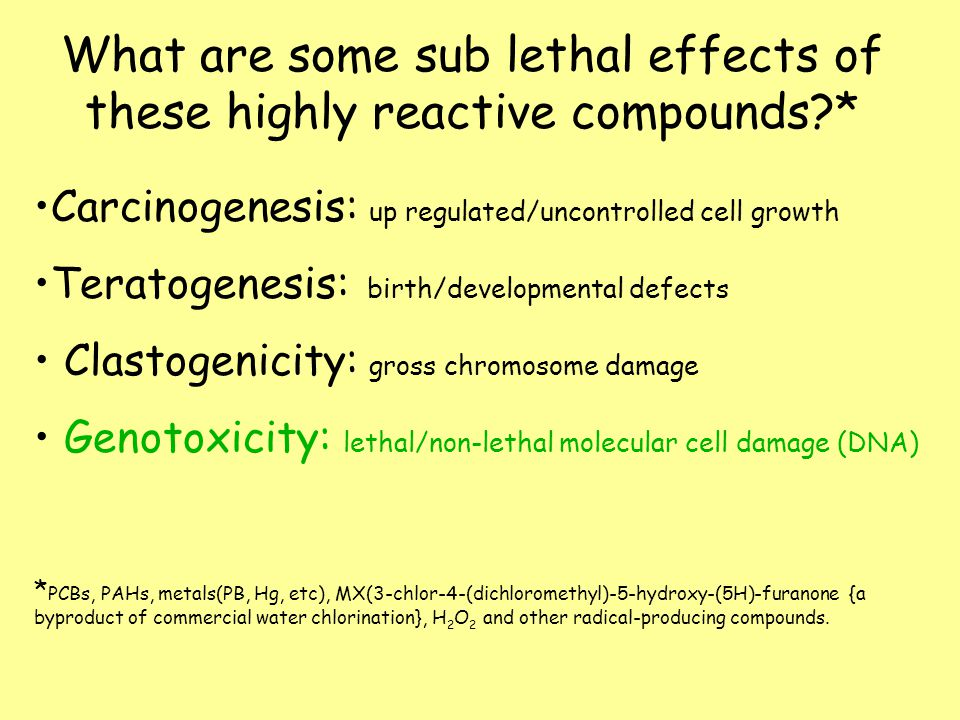What are some sub lethal effects of these highly reactive compounds?* Carcinogenesis: up regulated/uncontrolled cell growth Teratogenesis: birth/developmental defects Clastogenicity: gross chromosome damage Genotoxicity: lethal/non-lethal molecular cell damage (DNA) * PCBs, PAHs, metals(PB, Hg, etc), MX(3-chlor-4-(dichloromethyl)-5-hydroxy-(5H)-furanone {a byproduct of commercial water chlorination}, H 2 O 2 and other radical-producing compounds.