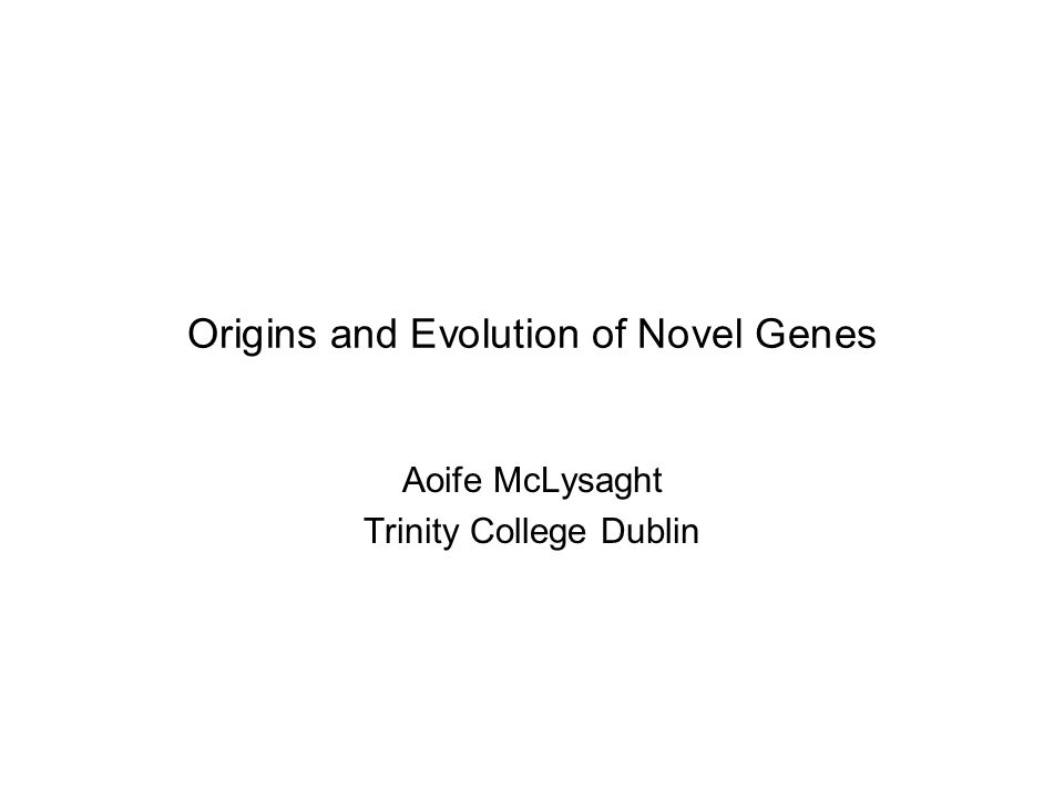 Origins and Evolution of Novel Genes Aoife McLysaght Trinity College Dublin