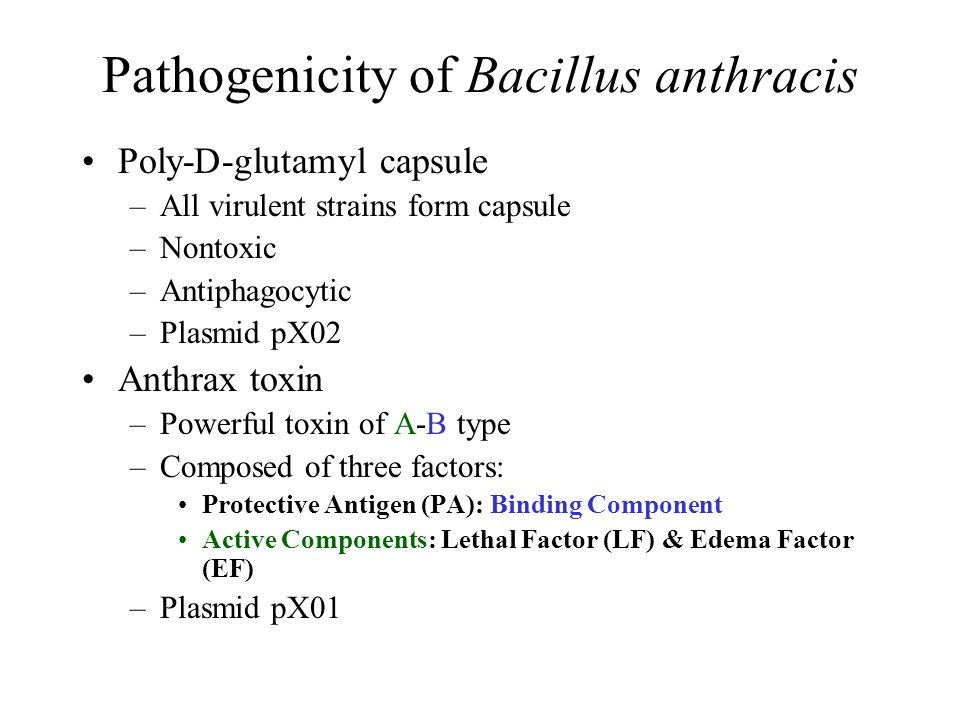 Pathogenicity of Bacillus anthracis Poly-D-glutamyl capsule –All virulent strains form capsule –Nontoxic –Antiphagocytic –Plasmid pX02 Anthrax toxin –Powerful toxin of A-B type –Composed of three factors: Protective Antigen (PA): Binding Component Active Components: Lethal Factor (LF) & Edema Factor (EF) –Plasmid pX01