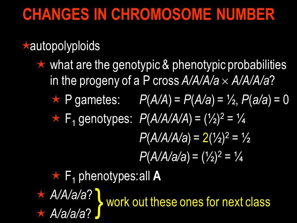 CHANGES IN CHROMOSOME STRUCTURE  translocations  heterozygotes  adjacent-1  4 lethal  adjacent-2  rare, 4 lethal  alternate  2 normal + 2 carrier