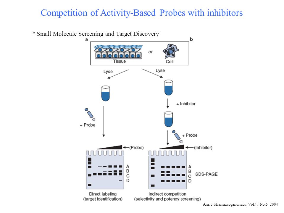 Competition of Activity-Based Probes with inhibitors * Small Molecule Screening and Target Discovery Am.