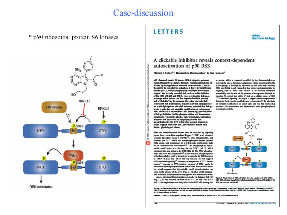 Case-discussion * p90 ribosomal protein S6 kinases