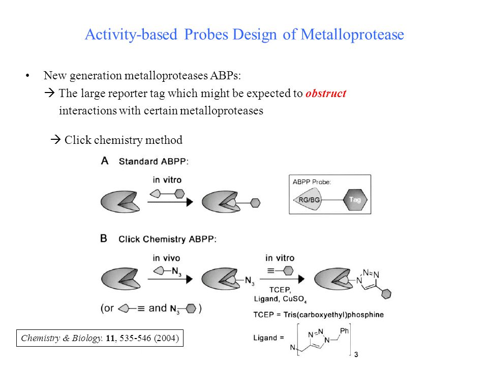 Activity-based Probes Design of Metalloprotease New generation metalloproteases ABPs:  The large reporter tag which might be expected to obstruct interactions with certain metalloproteases  Click chemistry method Chemistry & Biology.