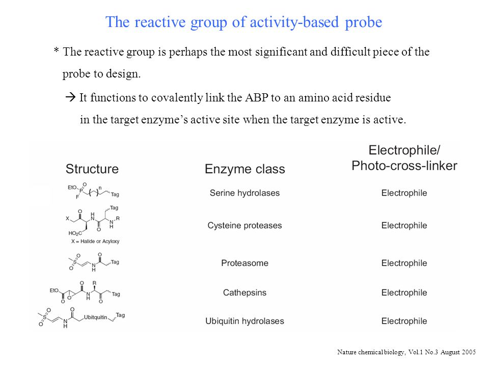 Structure of the new qABPs (NIRF-ABPs) The most stable probe