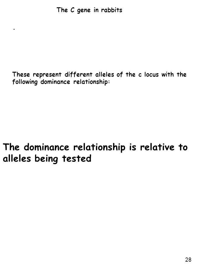 28 The C gene in rabbits · These represent different alleles of the c locus with the following dominance relationship: The dominance relationship is relative to alleles being tested