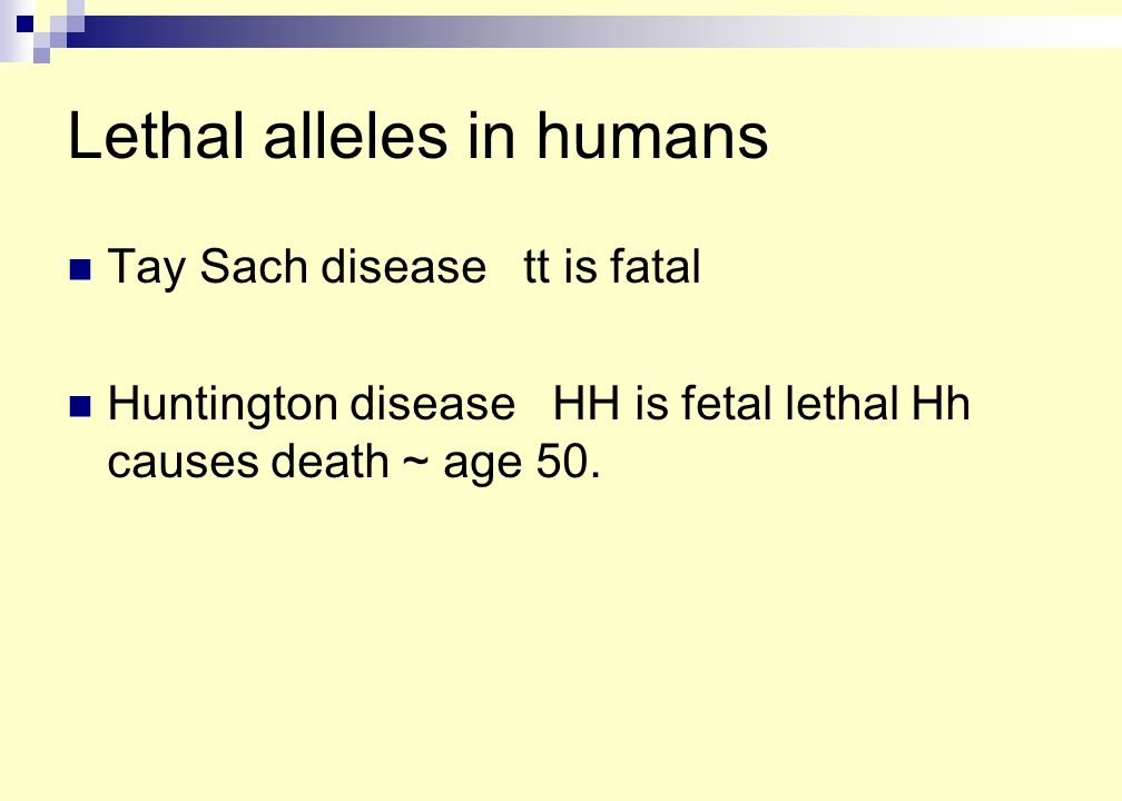 Lethal alleles in humans Tay Sach disease tt is fatal Huntington disease HH is fetal lethal Hh causes death ~ age 50.