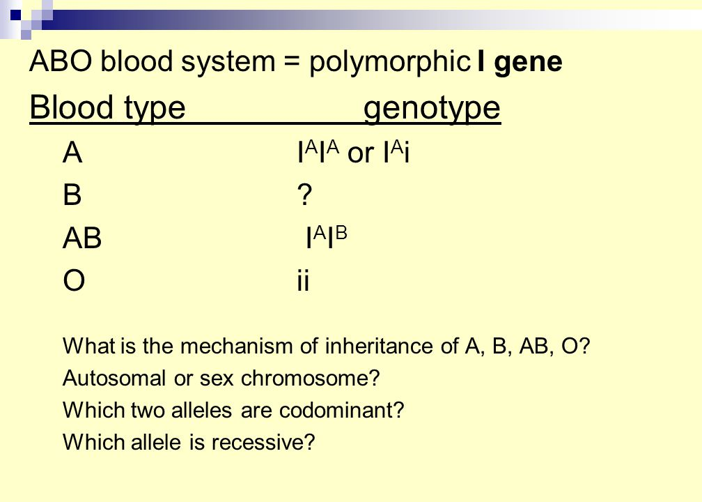 ABO blood system = polymorphic I gene Blood typegenotype AI A I A or I A i B B.
