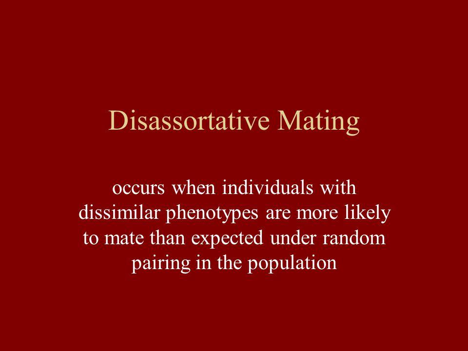 Disassortative Mating Cowslip
