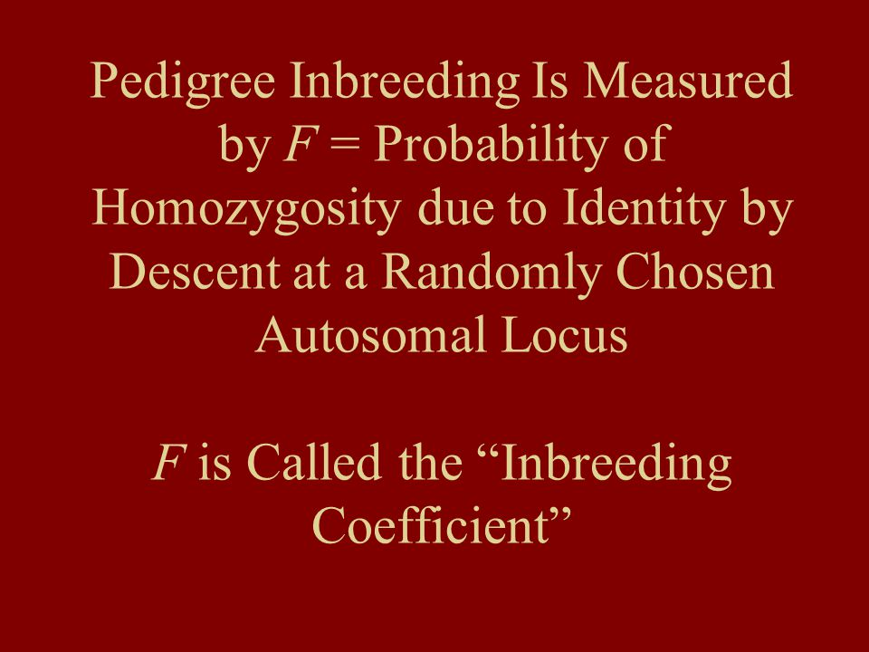 "Pedigree Inbreeding Is Measured by F = Probability of Homozygosity due to Identity by Descent at a Randomly Chosen Autosomal Locus F is Called the ""In"