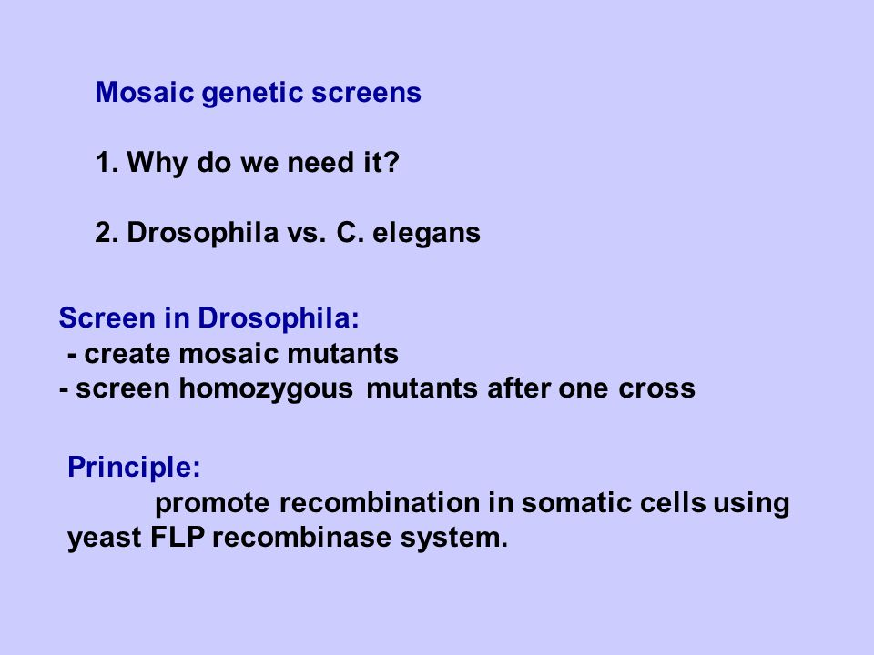 Methods for generating genetic mosaics 1.