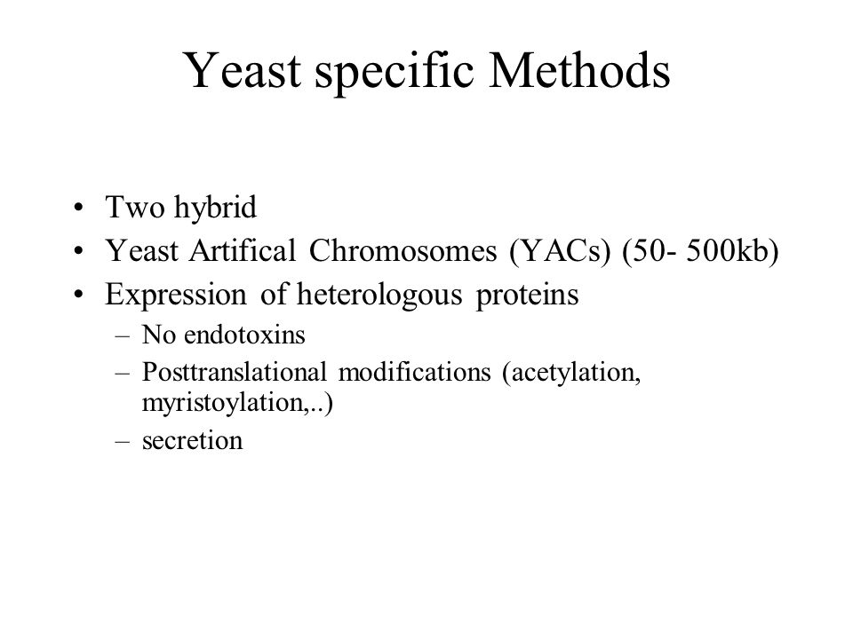 Yeast specific Methods Two hybrid Yeast Artifical Chromosomes (YACs) (50- 500kb) Expression of heterologous proteins –No endotoxins –Posttranslational modifications (acetylation, myristoylation,..) –secretion