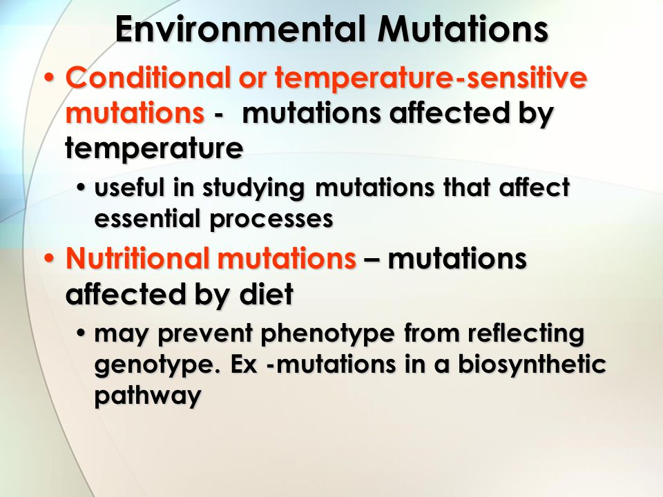 Environmental Mutations Conditional or temperature-sensitive mutations - mutations affected by temperature Conditional or temperature-sensitive mutati
