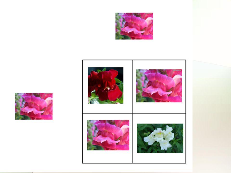 Figure 4-12 Copyright © 2006 Pearson Prentice Hall, Inc.