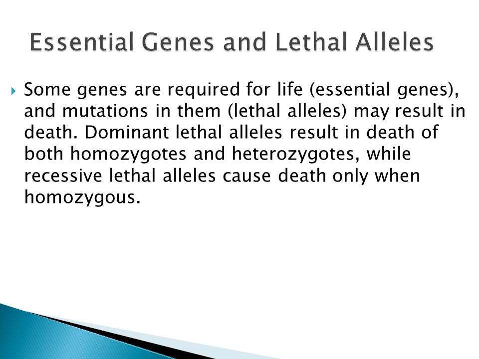  Some genes are required for life (essential genes), and mutations in them (lethal alleles) may result in death. Dominant lethal alleles result in de