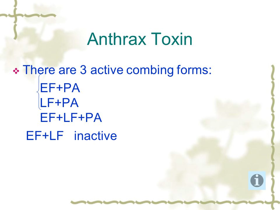 Anthrax Toxin  There are 3 active combing forms: EF+PA LF+PA EF+LF+PA EF+LF inactive