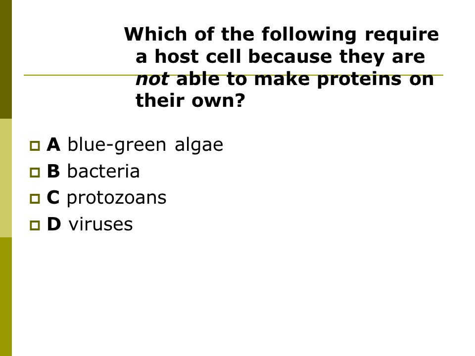 Which of the following require a host cell because they are not able to make proteins on their own.