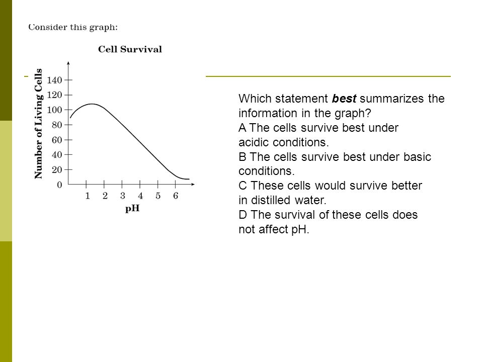 Which statement best summarizes the information in the graph.