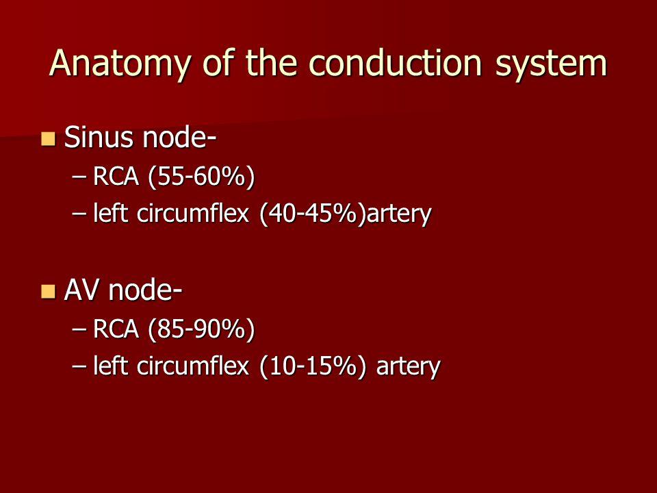 Sinus node- Sinus node- –RCA (55-60%) –left circumflex (40-45%)artery AV node- AV node- –RCA (85-90%) –left circumflex (10-15%) artery