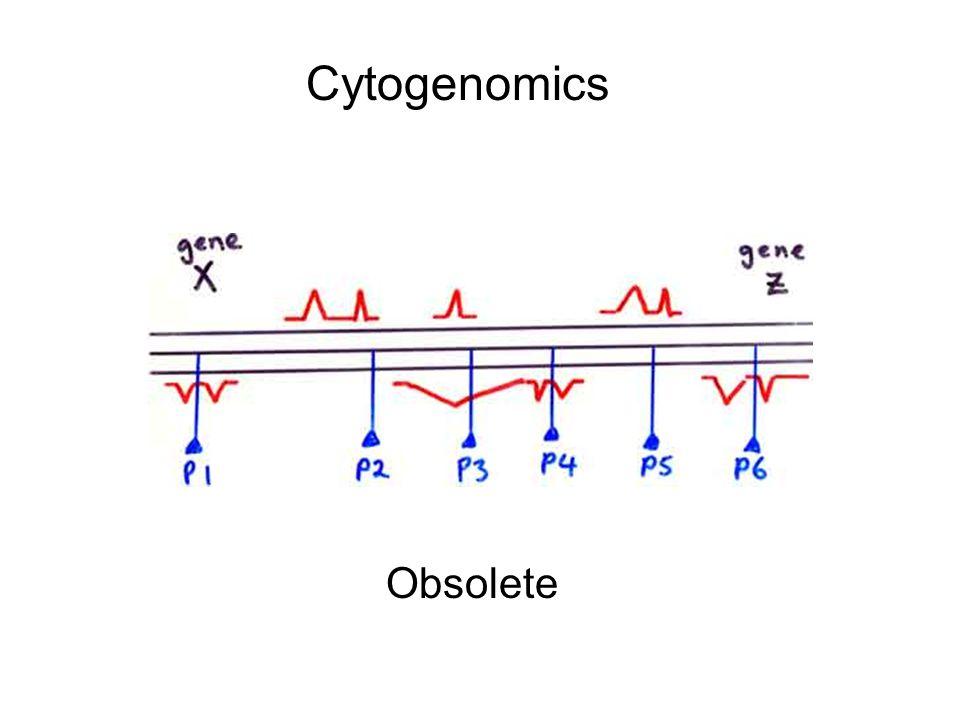 Cytogenomics Obsolete