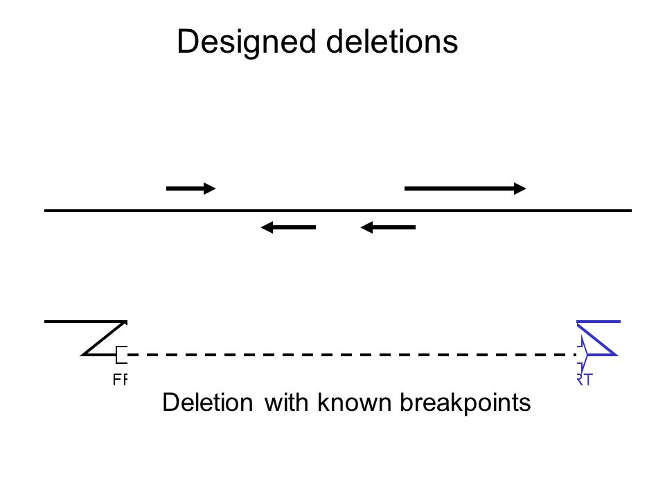 Designed deletions FRT Deletion with known breakpoints