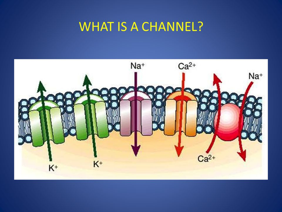 WHAT IS A CHANNEL?