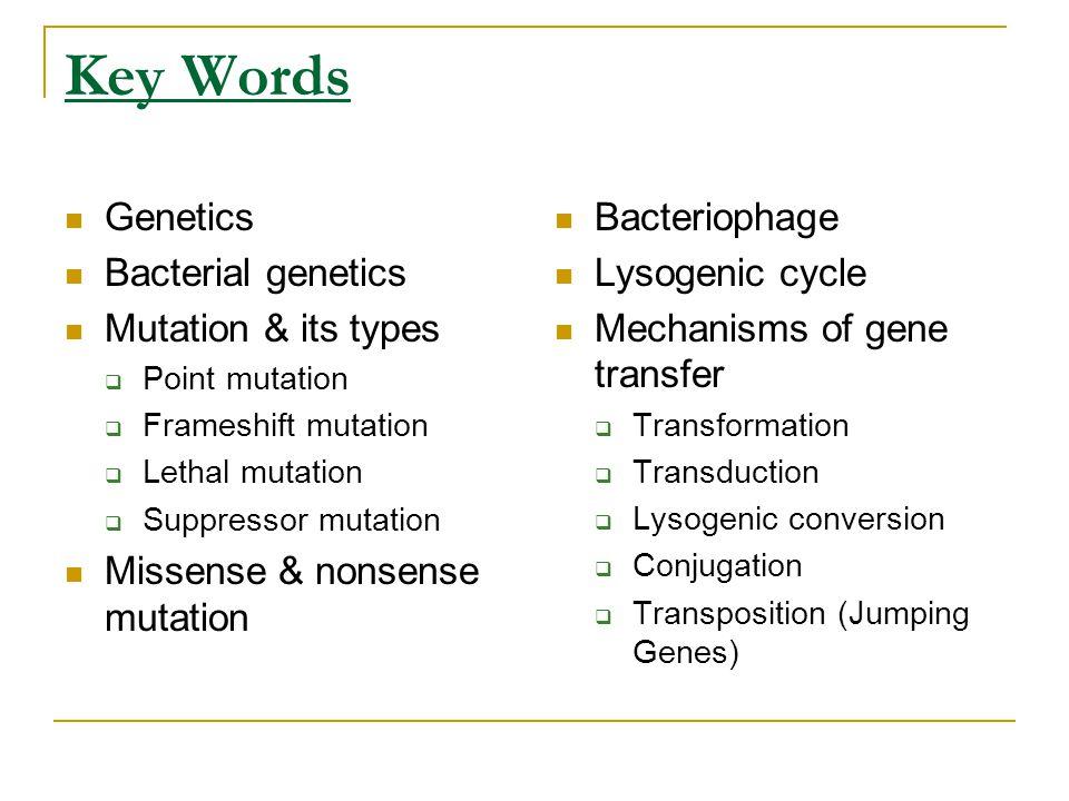 Key Words Genetics Bacterial genetics Mutation & its types  Point mutation  Frameshift mutation  Lethal mutation  Suppressor mutation Missense & n