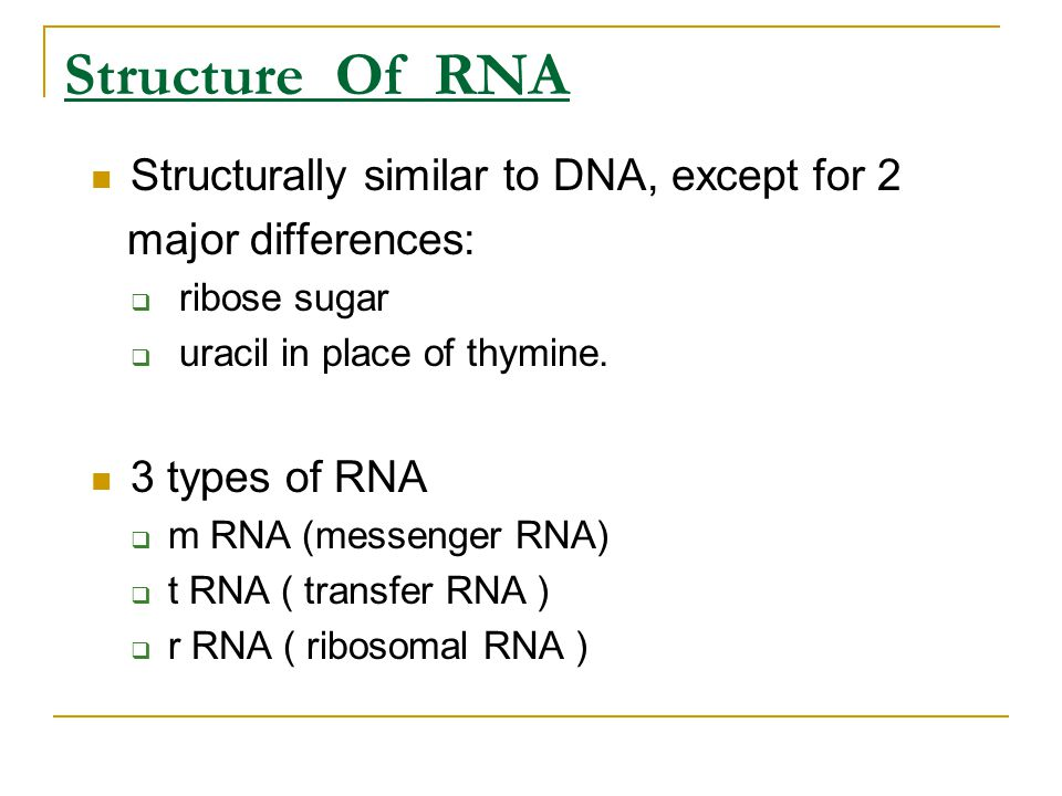 Structure Of RNA Structurally similar to DNA, except for 2 major differences:  ribose sugar  uracil in place of thymine. 3 types of RNA  m RNA (mes