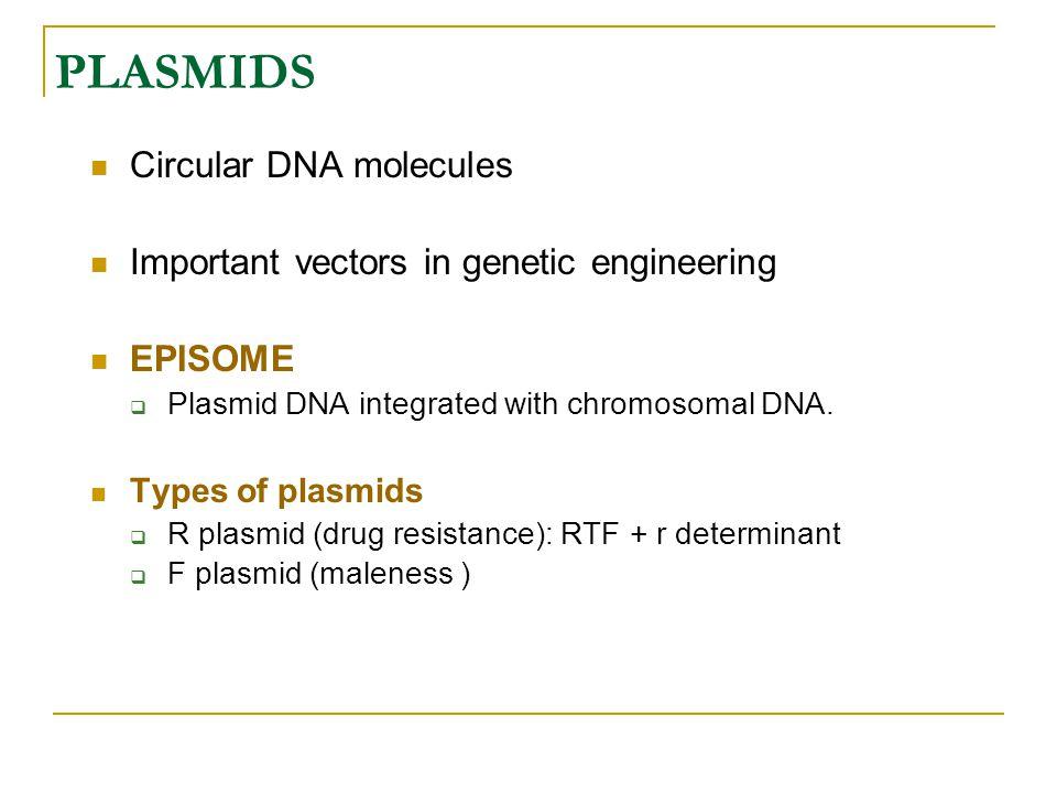 PLASMIDS Circular DNA molecules Important vectors in genetic engineering EPISOME  Plasmid DNA integrated with chromosomal DNA. Types of plasmids  R