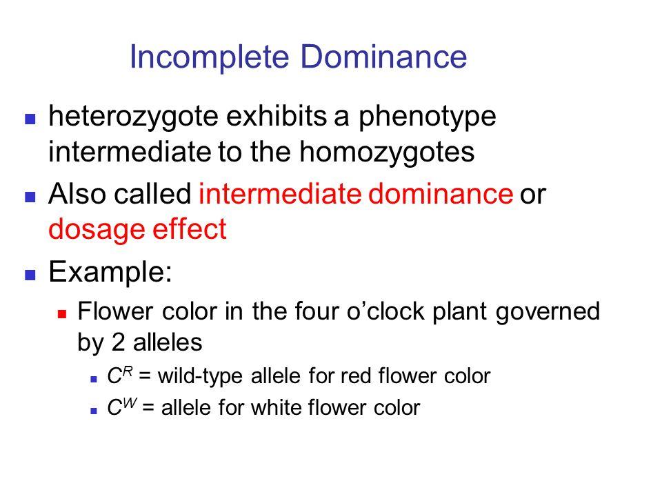 Incomplete Dominance heterozygote exhibits a phenotype intermediate to the homozygotes Also called intermediate dominance or dosage effect Example: Fl