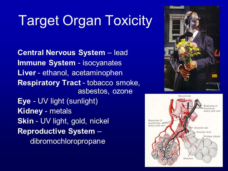 Target Organ Toxicity Central Nervous System – lead Immune System - isocyanates Liver - ethanol, acetaminophen Respiratory Tract - tobacco smoke, asbestos, ozone Eye - UV light (sunlight) Kidney - metals Skin - UV light, gold, nickel Reproductive System – dibromochloropropane