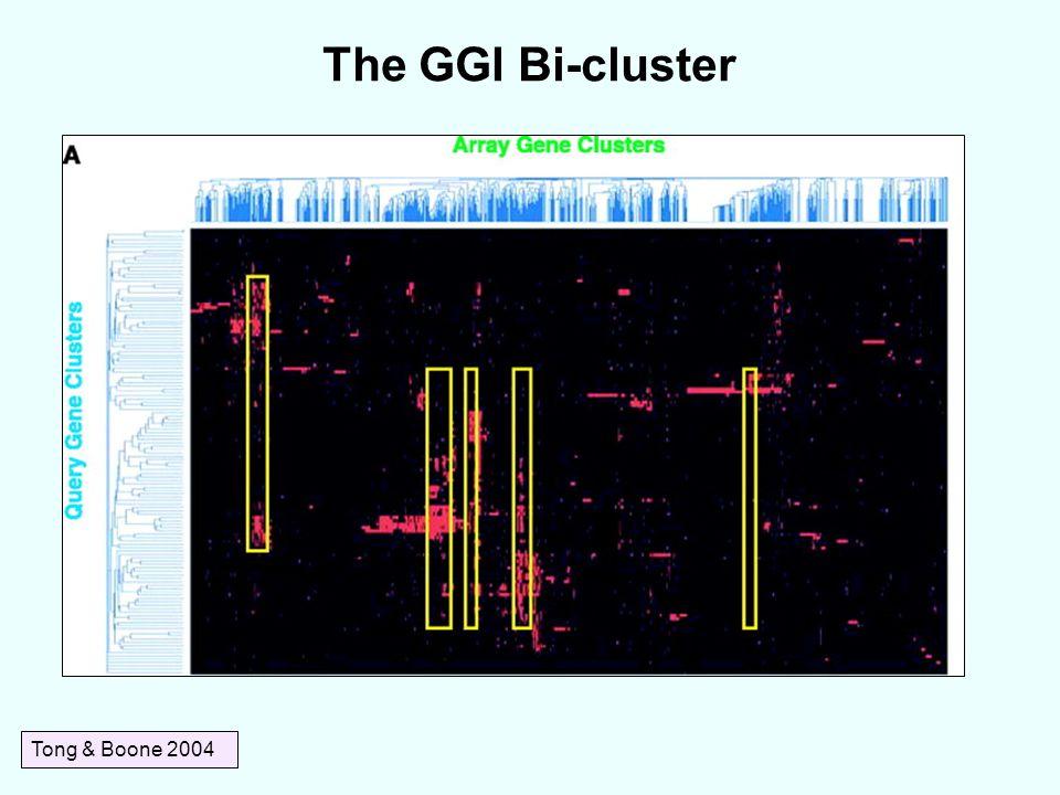The GGI Bi-cluster Tong & Boone 2004