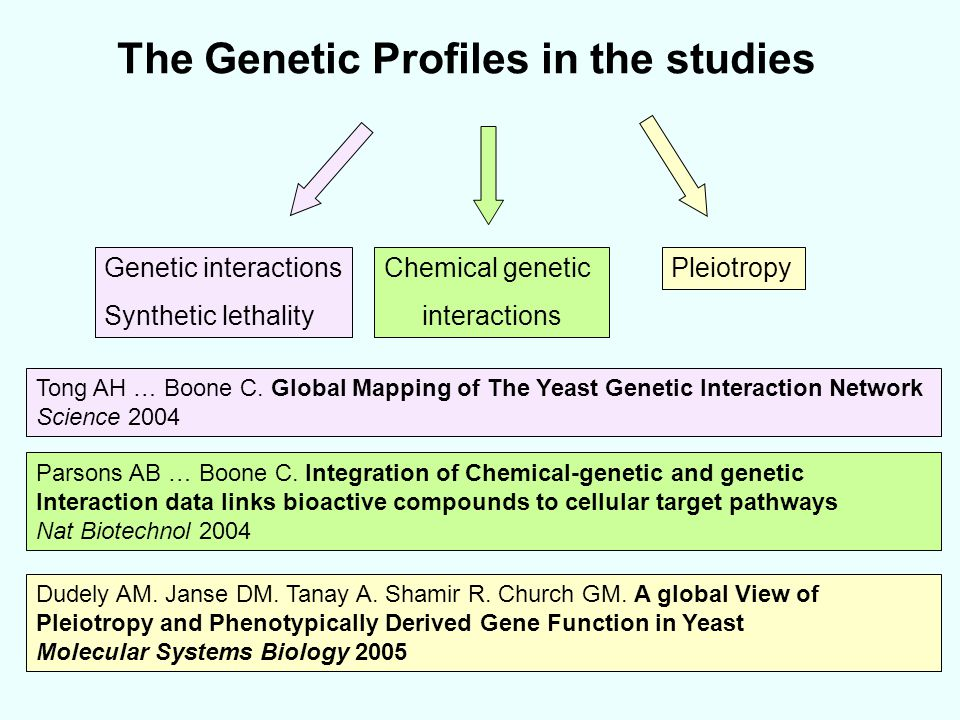 The Genetic Profiles in the studies Tong AH … Boone C. Global Mapping of The Yeast Genetic Interaction Network Science 2004 Genetic interactions Synth