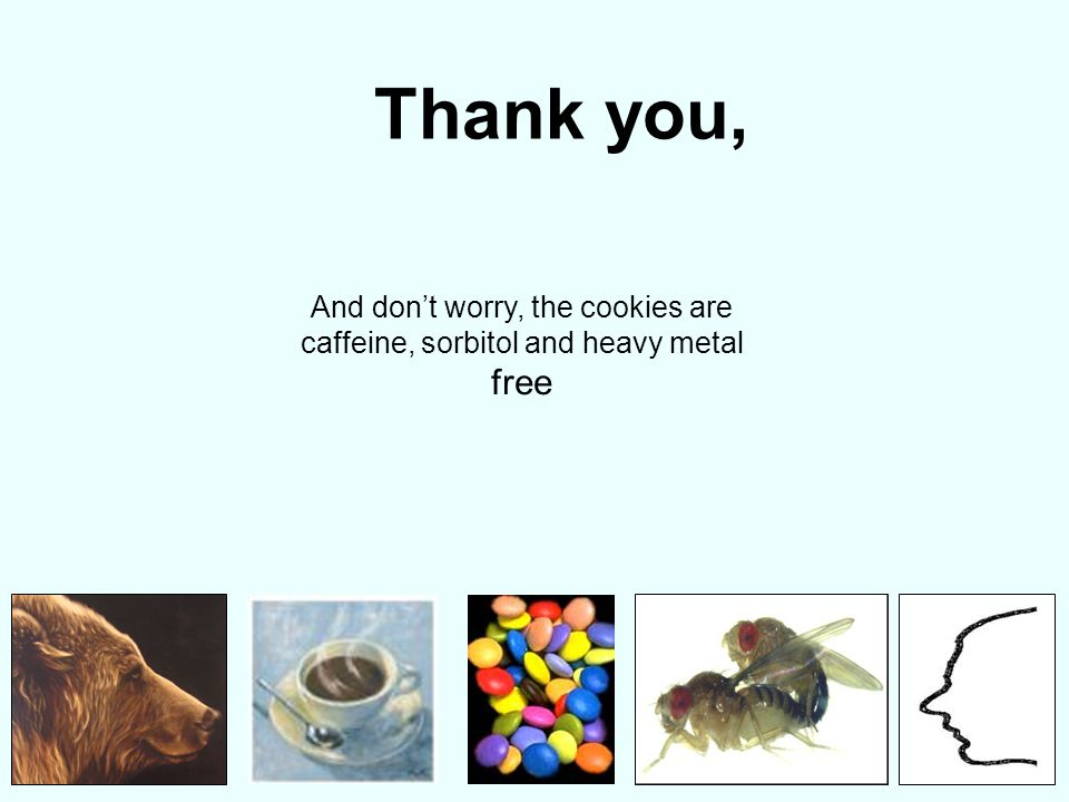 Thank you, And don't worry, the cookies are caffeine, sorbitol and heavy metal free