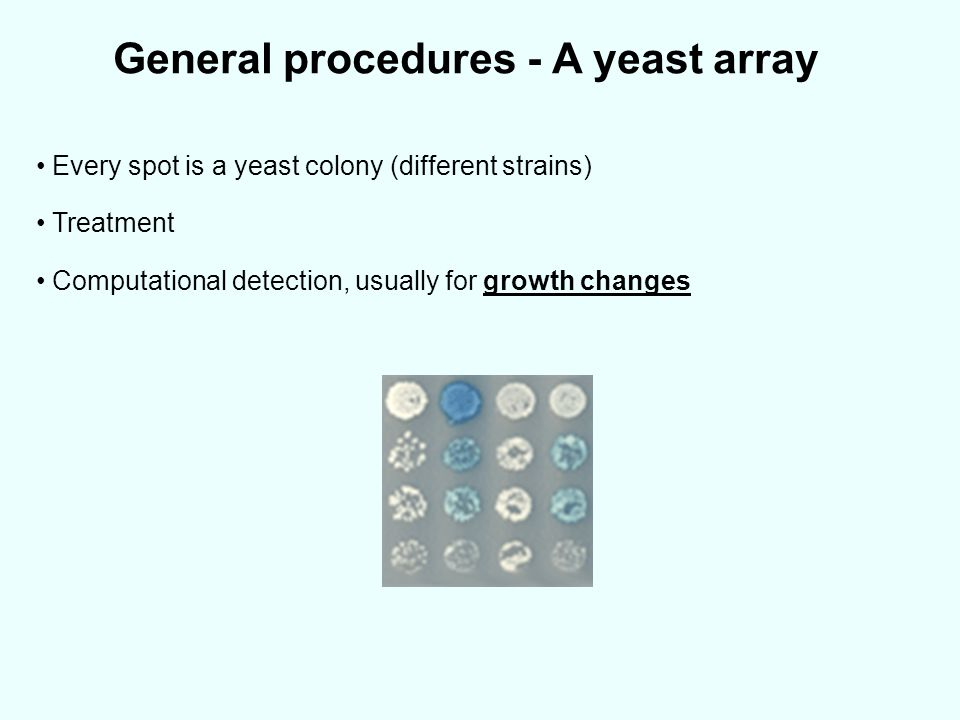 General procedures - A yeast array Every spot is a yeast colony (different strains) Treatment Computational detection, usually for growth changes