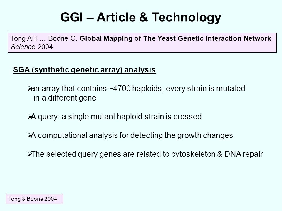 GGI – Article & Technology Tong & Boone 2004 SGA (synthetic genetic array) analysis  an array that contains ~4700 haploids, every strain is mutated in a different gene  A query: a single mutant haploid strain is crossed  A computational analysis for detecting the growth changes  The selected query genes are related to cytoskeleton & DNA repair Tong AH … Boone C.