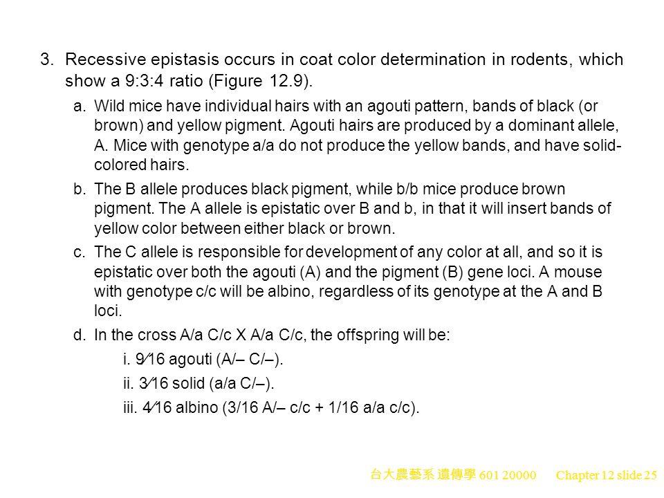台大農藝系 遺傳學 601 20000 Chapter 12 slide 25 3.Recessive epistasis occurs in coat color determination in rodents, which show a 9:3:4 ratio (Figure 12.9).