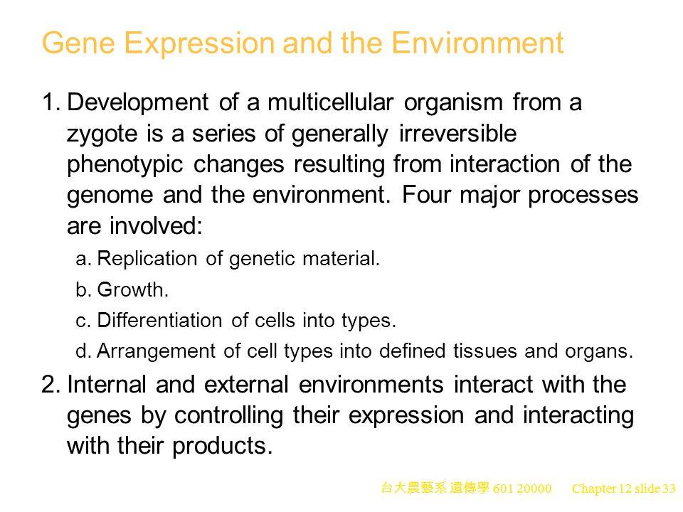 台大農藝系 遺傳學 601 20000 Chapter 12 slide 33 Gene Expression and the Environment 1.Development of a multicellular organism from a zygote is a series of generally irreversible phenotypic changes resulting from interaction of the genome and the environment.