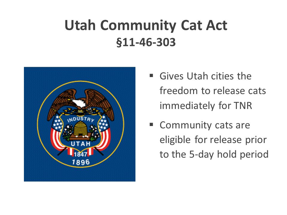 Utah Community Cat Act §11-46-303  Gives Utah cities the freedom to release cats immediately for TNR  Community cats are eligible for release prior to the 5-day hold period