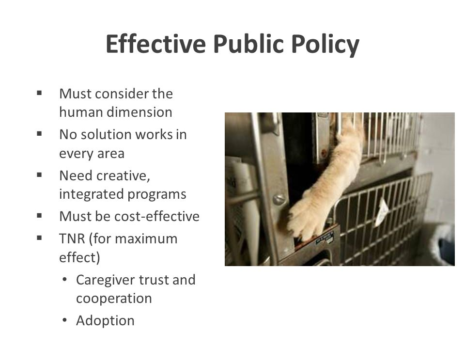 Effective Public Policy  Must consider the human dimension  No solution works in every area  Need creative, integrated programs  Must be cost-effective  TNR (for maximum effect) Caregiver trust and cooperation Adoption