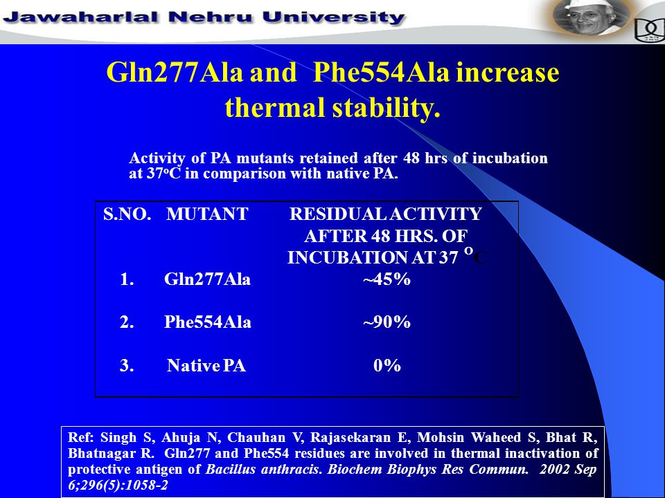 Gln277Ala and Phe554Ala increase thermal stability.