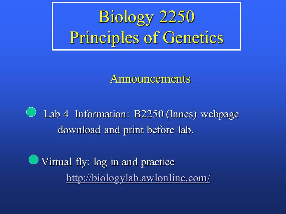 Translocation heterozygote Adjacent segregation T1T1 N1N1 N2N2 T2T2 inviable