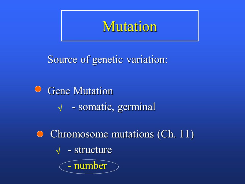Mutation Source of genetic variation: Gene Mutation - somatic, germinal - somatic, germinal Chromosome mutations (Ch.