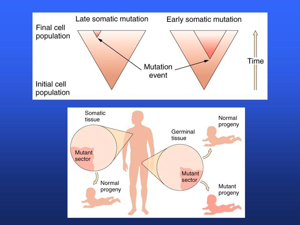 Somatic mutations