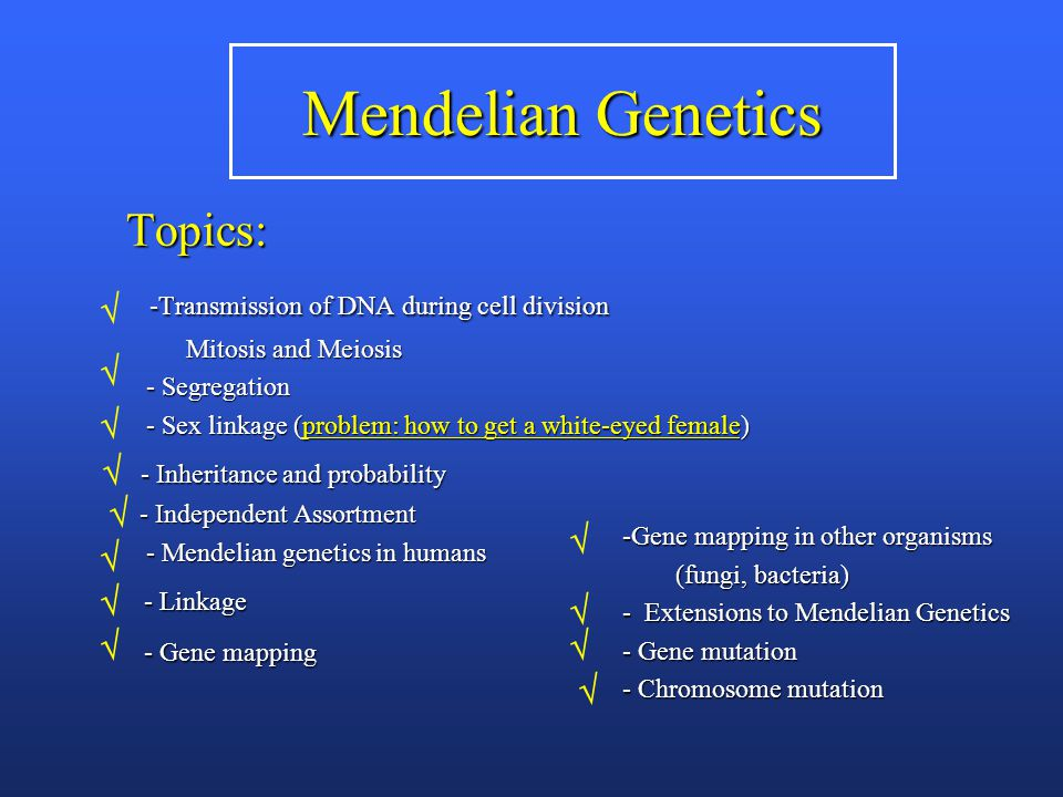 Mendelian Genetics Topics: -Transmission of DNA during cell division -Transmission of DNA during cell division Mitosis and Meiosis Mitosis and Meiosis - Segregation - Segregation - Sex linkage (problem: how to get a white-eyed female) - Sex linkage (problem: how to get a white-eyed female) - Inheritance and probability - Inheritance and probability - Independent Assortment - Independent Assortment - Mendelian genetics in humans - Mendelian genetics in humans - Linkage - Linkage - Gene mapping - Gene mapping -Gene mapping in other organisms (fungi, bacteria) (fungi, bacteria) - Extensions to Mendelian Genetics - Gene mutation - Chromosome mutation            