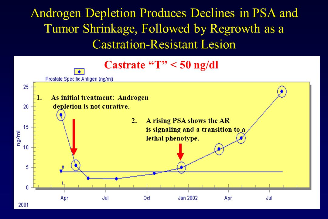 "Androgen Depletion Produces Declines in PSA and Tumor Shrinkage, Followed by Regrowth as a Castration-Resistant Lesion Castrate ""T"" < 50 ng/dl 1.As in"