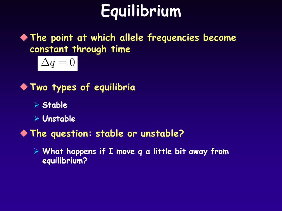 Equilibrium uThe point at which allele frequencies become constant through time uTwo types of equilibria  Stable  Unstable uThe question: stable or unstable.