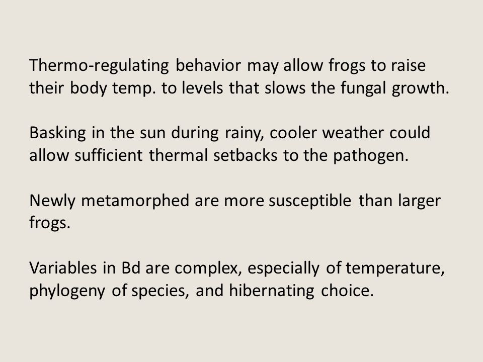 Thermo-regulating behavior may allow frogs to raise their body temp. to levels that slows the fungal growth. Basking in the sun during rainy, cooler w