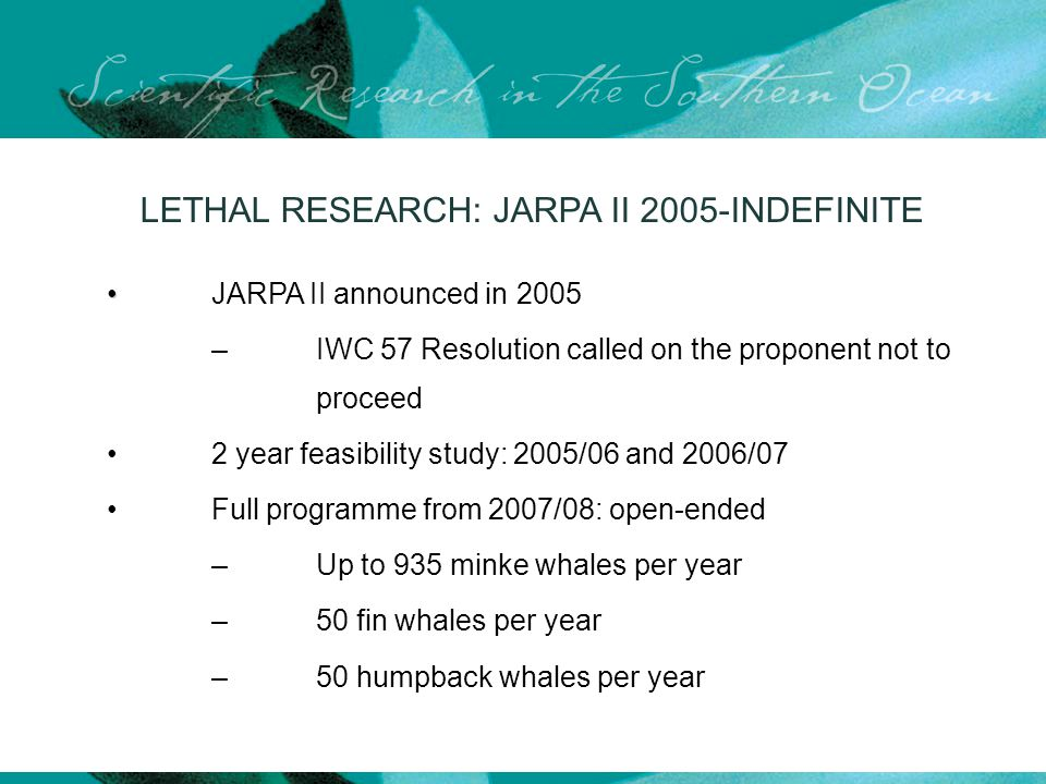 LETHAL RESEARCH: JARPA II 2005-INDEFINITE JARPA II announced in 2005 –IWC 57 Resolution called on the proponent not to proceed 2 year feasibility study: 2005/06 and 2006/07 Full programme from 2007/08: open-ended – Up to 935 minke whales per year – 50 fin whales per year – 50 humpback whales per year