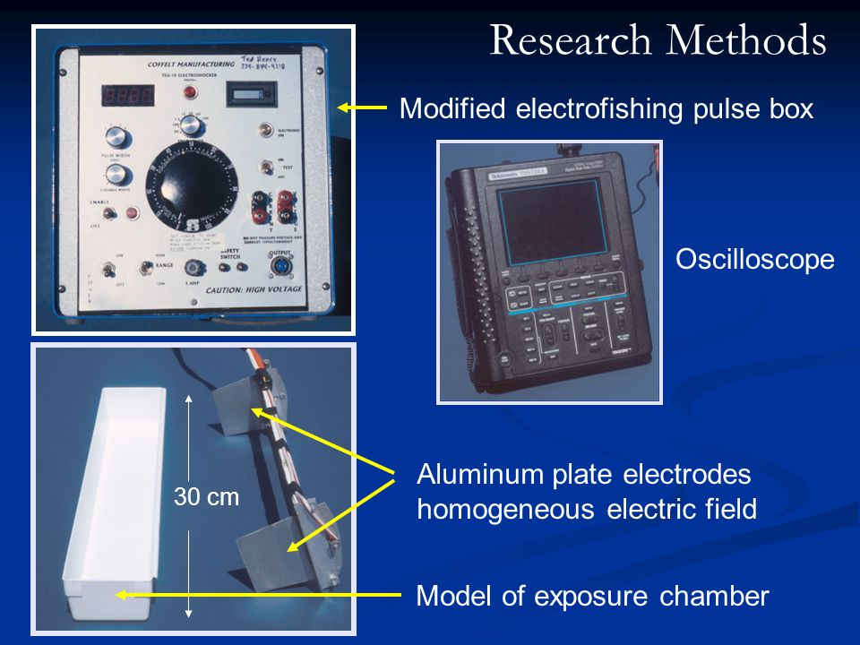 30 cm Modified electrofishing pulse box Oscilloscope Aluminum plate electrodes homogeneous electric field Model of exposure chamber Research Methods