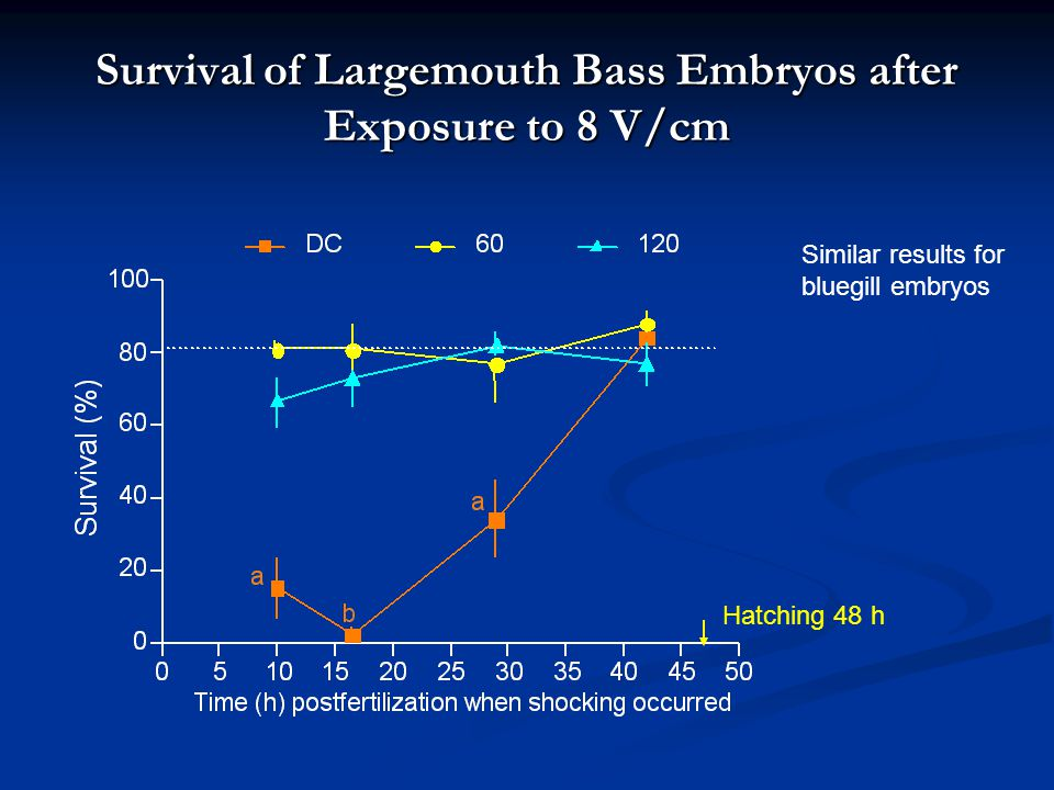 Survival of Largemouth Bass Embryos after Exposure to 8 V/cm Control (survival 83%) Hatching 48 h Similar results for bluegill embryos